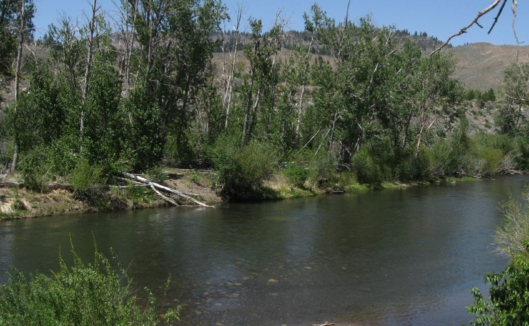 Truckee River Fishing Tips